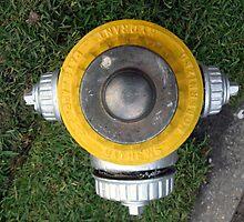 Fire Hydrant  by NOLAlphabet