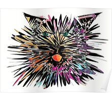 Colored cat Iwan Poster