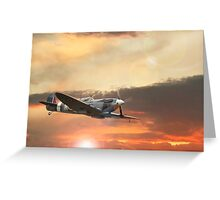 Spitfire Mk IX Greeting Card