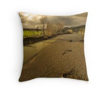Winter Afternoon in the Manawatu Throw Pillow