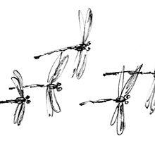 Dragonflies by BorisBurakov