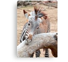 Big Stripes to Fill Photographic Print Canvas Print
