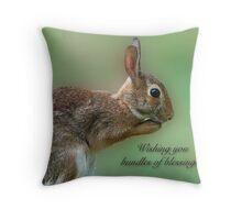 Wishing you bundles of blessings . . .  Throw Pillow