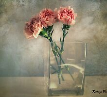 Vintage Carnations by KatMagic Photography