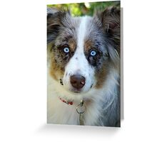 Ice Blue Eyes Greeting Card