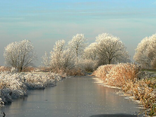 A MAGICAL WINTERS MORNING by Johan  Nijenhuis