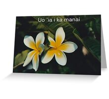 FRANGI PANGI  Greeting Card