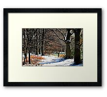 In winter wonderland Framed Print