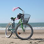 Beach Bike by ALittleBitofRnR