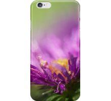 Dewy Purple Asters iPhone Case/Skin