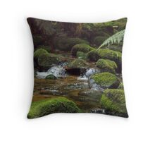 mossy creek - at St Columba Falls, east coast Tasmania  Throw Pillow