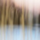 winter blurred by Laurie Minor