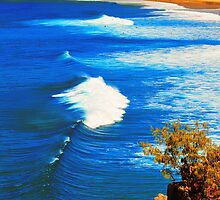 """Alexandria Bay Noosa Heads Oztralia by Phineous """"Flash""""   Cassidy"""