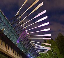 Parramatta Bridge & Paddle by Ian Moses