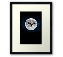 How to train your dragon - Night flight Framed Print