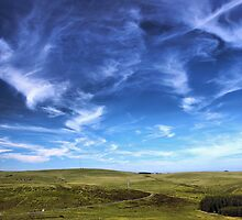 Dartmoor - Towards Princetown by julala
