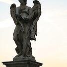 Roman Angel  by ALittleBitofRnR