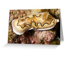 Ribbon Reefs - Nudibranch Greeting Card
