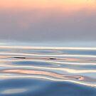 Flowing... by LindaR