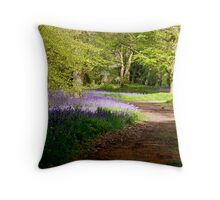 A Walk in Bluebell Wood- Thorpe Perrow (Spring) Throw Pillow