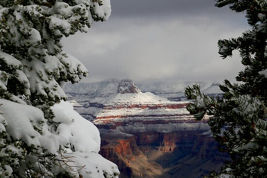 Snow in the Canyon by Michelle Pearson