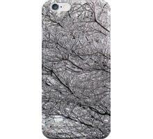 ice maze iPhone Case/Skin
