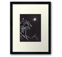 Night Creatures Framed Print