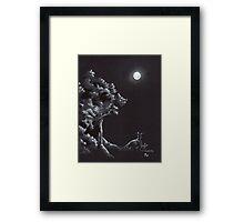 Night Creatures Framed Print