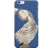 Into the beyond (snowing) iPhone Case/Skin