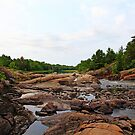 Sturgeon Chutes French River by Debbie Oppermann