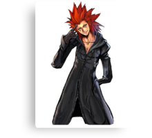 Axel Re-Finish Canvas Print