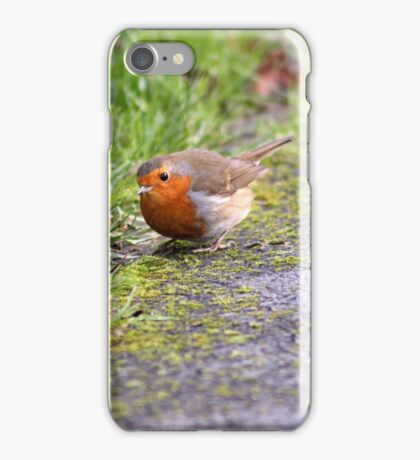 Foraging Robin iPhone Case/Skin