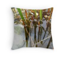 Reed Reflections Throw Pillow