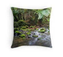 Tara River Throw Pillow