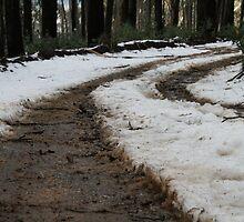 Muddy Track by Jordan N Clarke