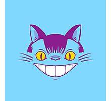 The Cheshire Cat Bus Photographic Print