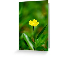 Natures simplistic beauty, strength, perseverance. Greeting Card