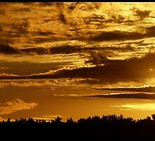 75 mph sunset by brandiejenkins