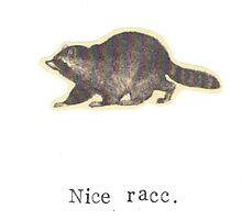 Nice Racc Vintage Raccoon by bluespecsstudio
