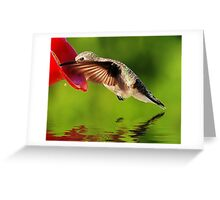 Caught In The Nectar Greeting Card