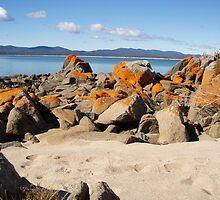 sunny beach again this morning - Tasmania by gaylene