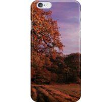 Evening Fall iPhone Case/Skin