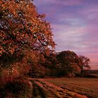 Evening Fall by emajgen
