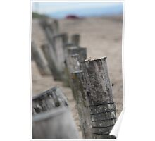 Posts along the beach Poster