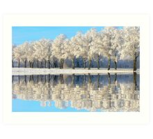 NATURES WINTER MIRROR Art Print