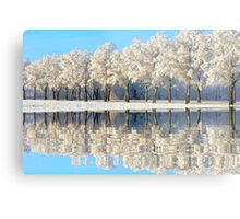 NATURES WINTER MIRROR Metal Print
