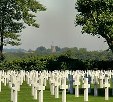 Fallen but not Forgotten by Jo Nijenhuis