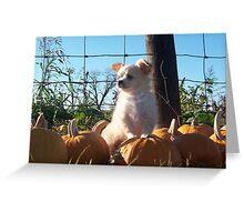 King Pumpkin  Greeting Card