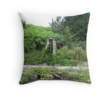 Nature strikes back home Throw Pillow