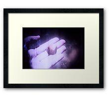 2866 Framed Print